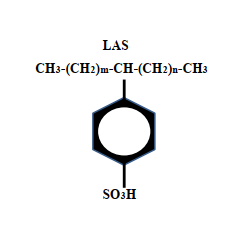 labsa structure