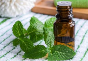 Application of menthol in medicine and pharmacy