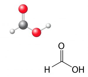 chemical formula and spatial structure of formic acid