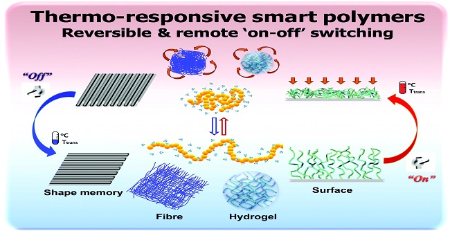 Thermoresponsive polymers